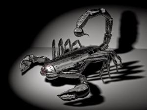 metal-scorpion
